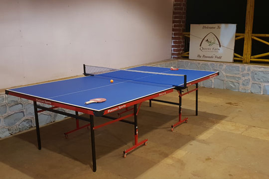 Table tennis game section